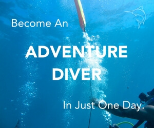 Become an Adventure Diver in just one day.