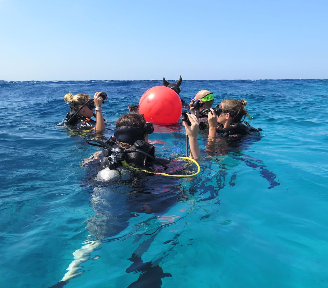 A group of students prepare to descend onto the dive site.